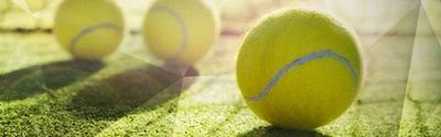 Bwin Wimbledon Freebet Banner