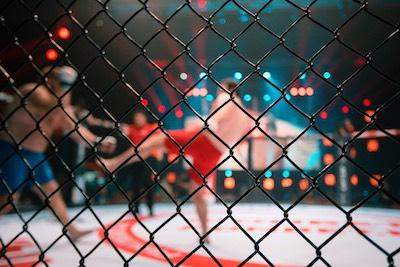 UFC-Fightszene durch Gitter